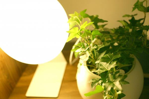 led-light-color01