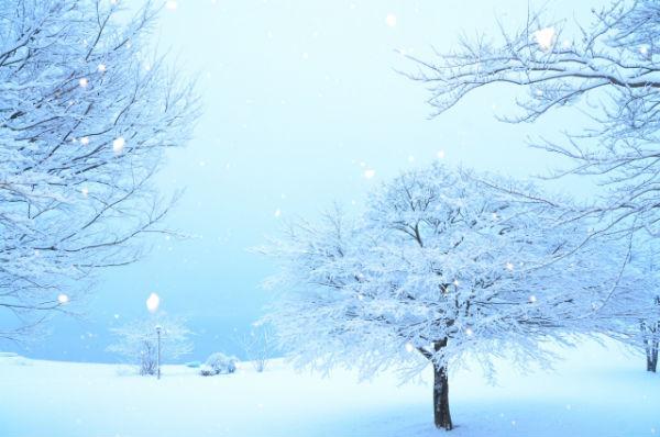 snow-appliances-accident01