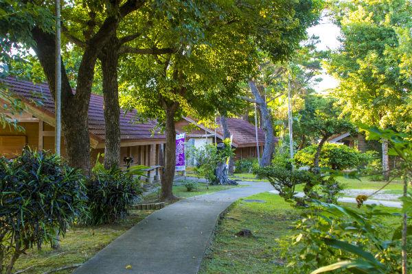 【宮古島市平良】宮古島市熱帯植物園