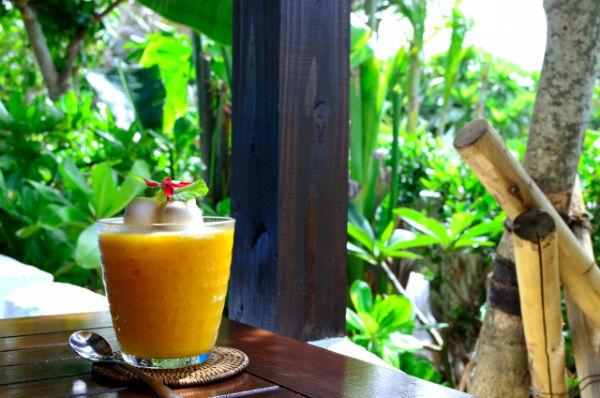 【宮古島の美味しい特産品】マンゴー