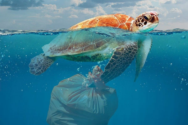 resolabo-bali-plastic-pollution01